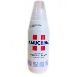 Amuchina Flacone 500ml
